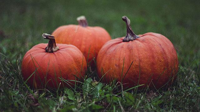 pumpkinsoutside