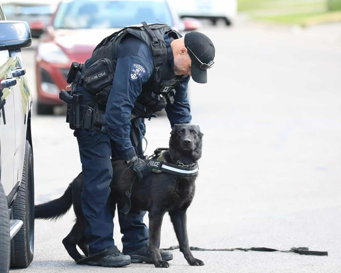 cops_with_dog