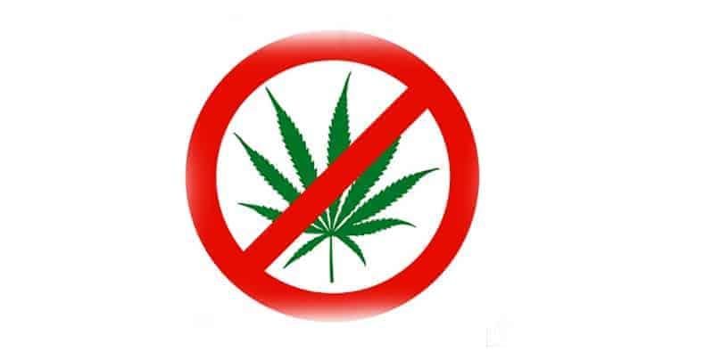 no_cannabis